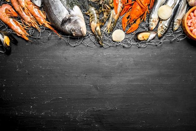 Vários camarões marinhos, mariscos e lagostas na rede de pesca