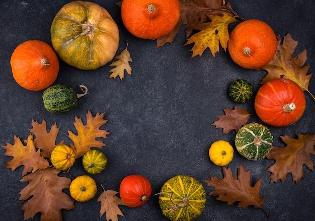 Vários conceitos decorativos de outono de abóboras