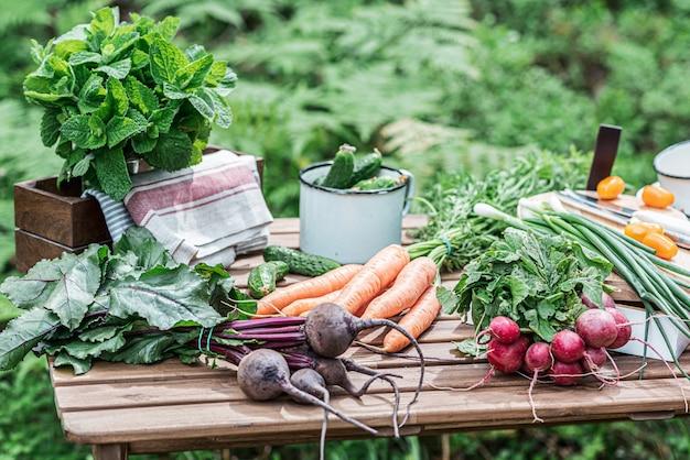 Vários legumes frescos na mesa de madeira. conceito de comida bio.