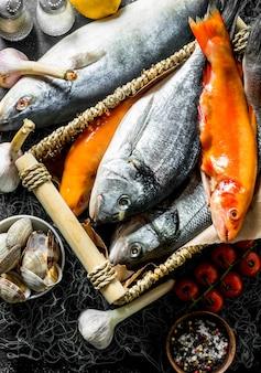Vários peixes crus com ostras e alho. em rústico escuro
