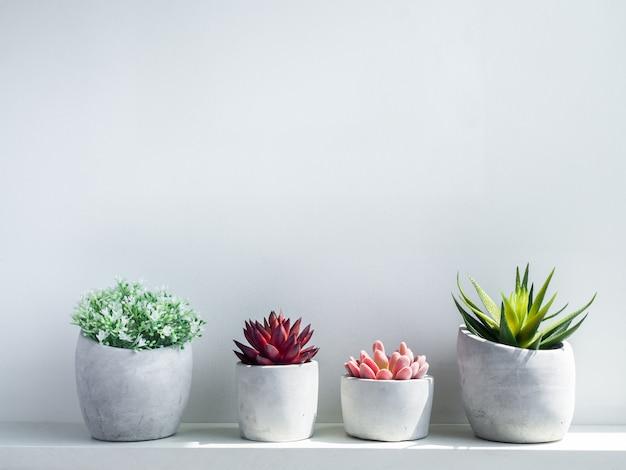 Vários potes de concreto. plantador de cimento geométrico moderno com flores brancas e planta suculenta verde, vermelha e rosa em madeira branca