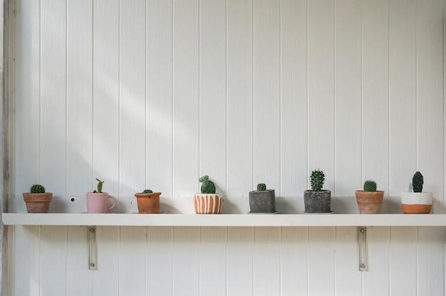 Vários tipos de cactos verdes em vaso de flores na decoração de prateleira na parede de madeira branca
