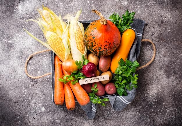 Vários vegetais de outono. conceito de colheita