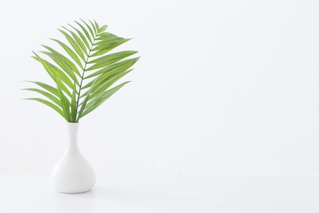 Vaso branco com folhas de palmeira no fundo branco
