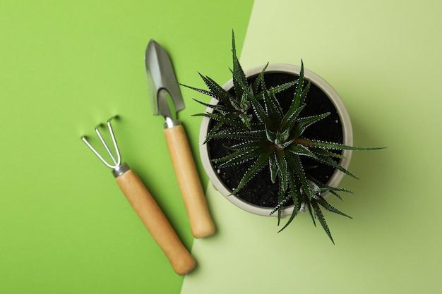 Vaso com plantas e ferramentas de jardinagem em dois tons