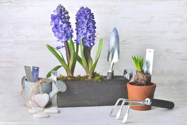Vaso de flores ao lado de pá e regador e outros vasos