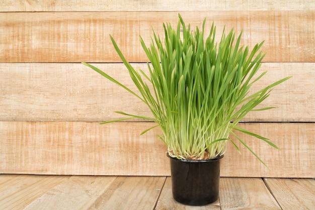 Vaso de flores com verduras na mesa fica em um espaço de parede de madeira marrom claro. copie o espaço