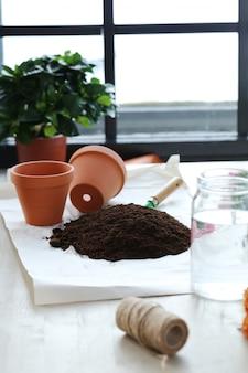 Vaso de flores e fertilizantes em casa interior, conceito de jardinagem