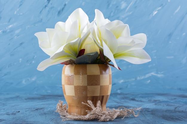 Vaso de madeira de flores de magnólia branca em azul.