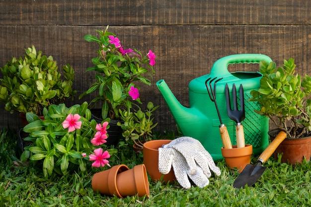 Vaso de plantas com regador Foto gratuita
