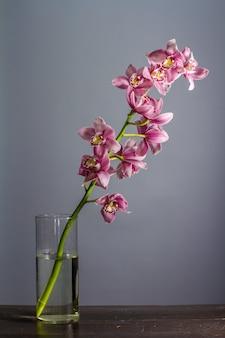 Vaso de vidro com ramo de orquídeas roxas