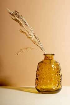 Vaso de vidro transparente com flores secas sobre fundo bege com sombra. natureza morta abstrata com espaço de cópia