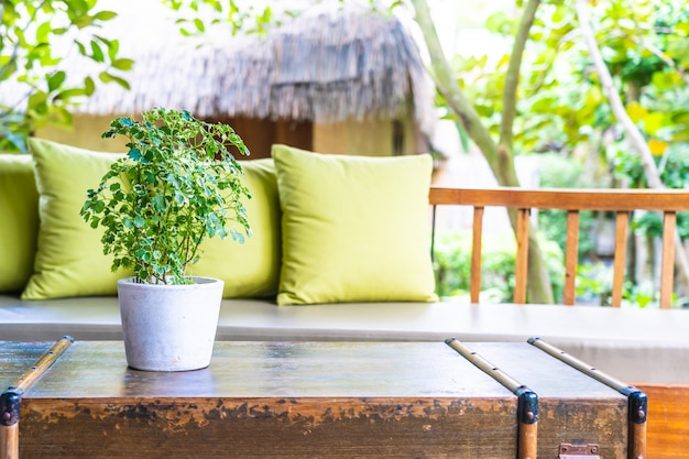 Vaso, planta, ligado, decoração tabela, com, travesseiro, ligado, cadeira sofá