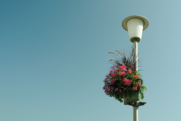 Vaso vertical de flores para jardinagem em um poste de luz no fundo do céu azul