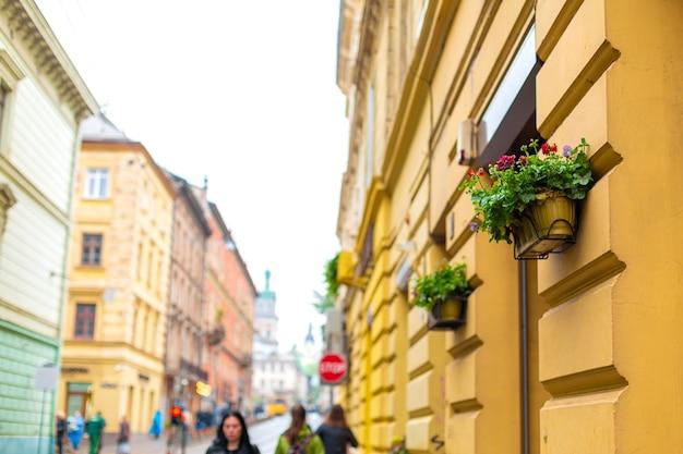 Vasos com flores frescas na parede à entrada do edifício. aconchego nos detalhes do exterior