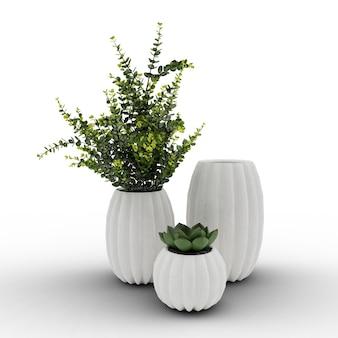 Vasos com plantas e suculentas em fundo branco