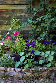 Vasos de flores como decoração no jardim