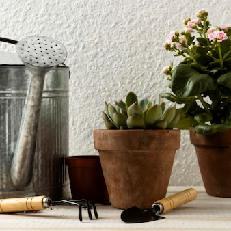 Vasos de flores e ferramentas de ângulo baixo