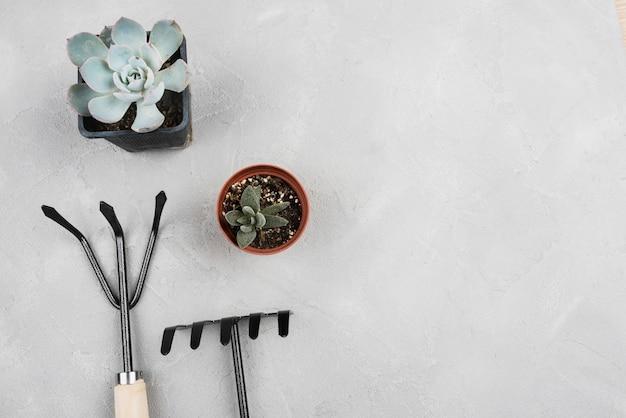 Vasos de flores e ferramentas de jardinagem com espaço de cópia