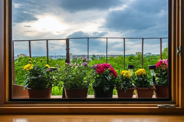 Vasos de flores fora da janela na varanda com fundo de céu nublado.