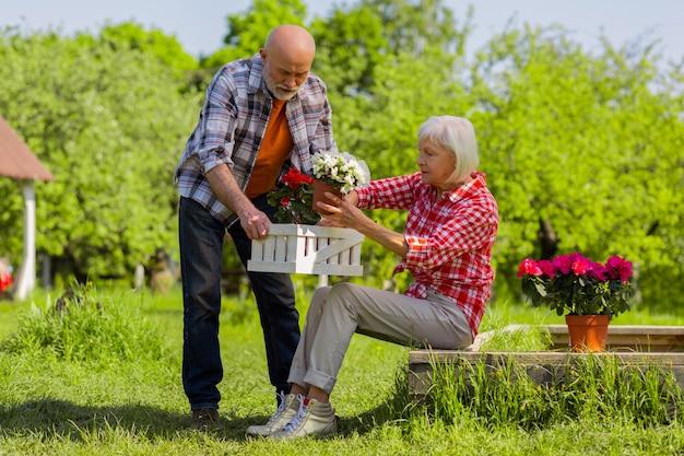 Vasos de flores. marido e mulher aposentados e ocupados colocando vasos de flores em uma caixa branca e passando um tempo fora