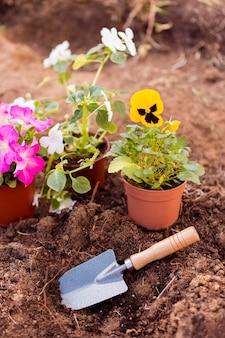 Vasos de flores no solo com ferramenta
