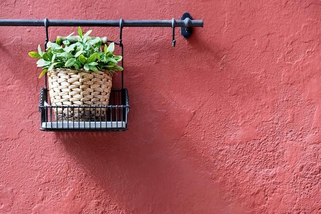 Vasos de flores que decoram na parede vermelha na cidade velha de marbella