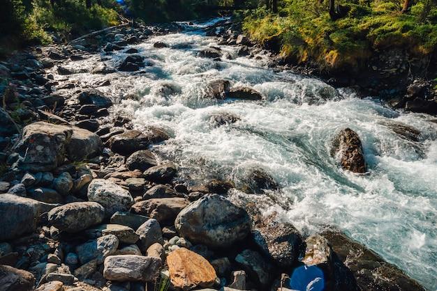Vegetação bonita perto do riacho da montanha na luz solar. pedregulhos grandes em close-up de fluxo de água rápido. fundo das corredeiras do rio em dia de sol. fluxo rápido perto de pedras molhadas. rica flora das terras altas.