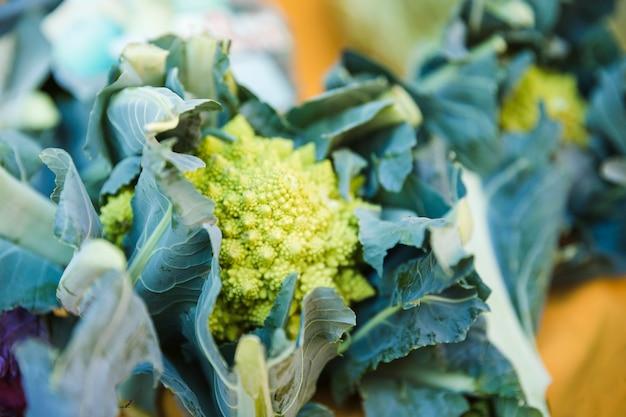 Vegetal brassica romanesco orgânico fresco à venda no mercado