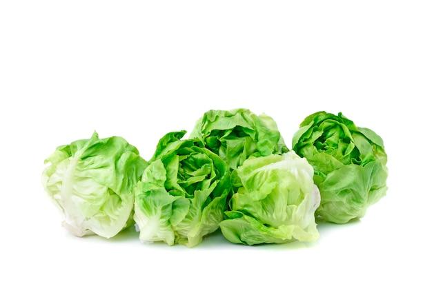 Vegetal de alface manteiga verde ou cabeça de manteiga isolada no chão traseiro branco