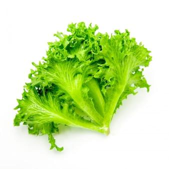 Vegetal de salada em branco isolado