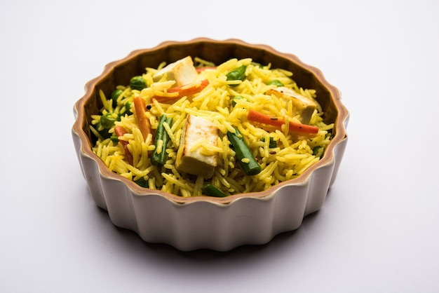 Vegetariano paneer biryani ou panir pulav, comida indiana popular