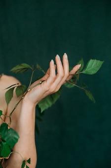 Veias da mão, juventude, vida, conceito, escalada, planta, flora, vegetação