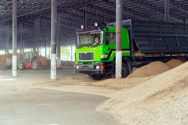 Veículo agrícola e grande pilha de feno seco