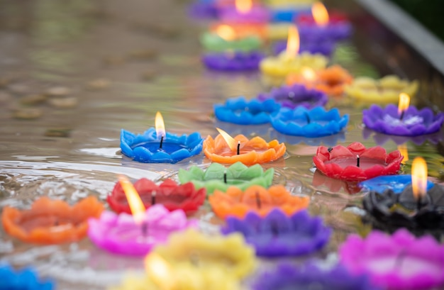 Velas coloridas em forma de flor estão flutuando na água.
