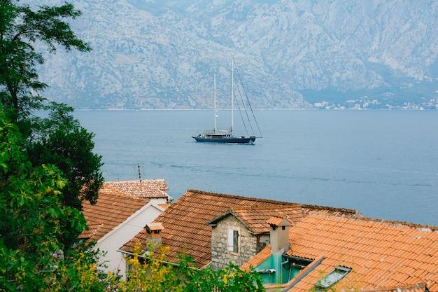Veleiro flutua no mar através dos galhos sobre os telhados das casas
