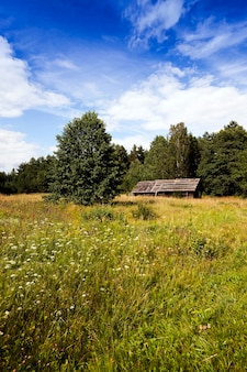 Velha casa abandonada de madeira. localizada na zona rural.