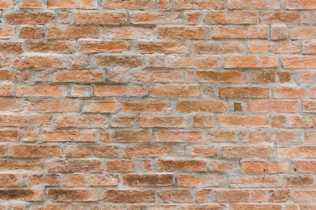 Velha parede de tijolos antigos