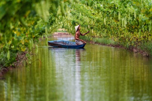 Velho fazendeiro vietnamita mantendo a produção ficando sobre o barco tradicional no lago