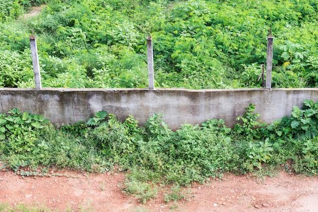 Velho muro de concreto