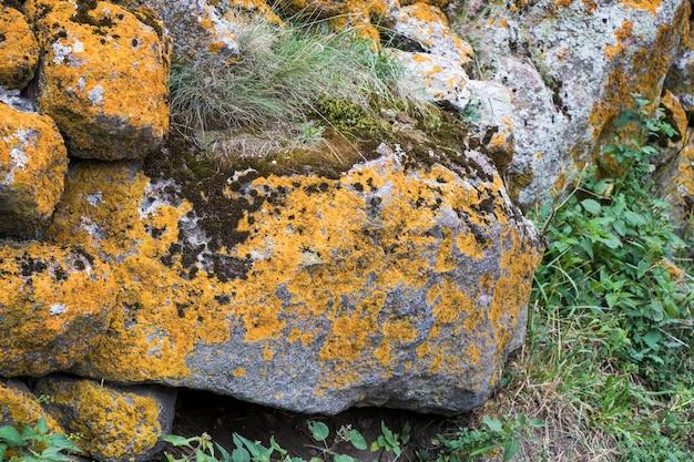 Velho muro de pedra, musgo e mofo na pedra na geórgia