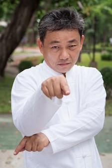 Velho sério praticando kungfu de estilo louva-a-deus ou tai chi no parque conceito de exercício de meditação de estilo de vida saudável