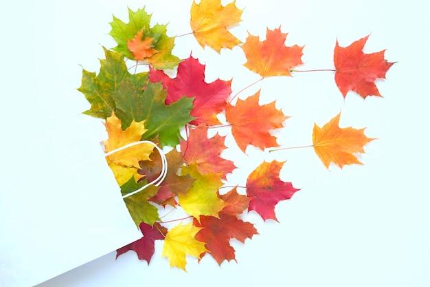 Venda de outono. saco de papel com folhas de maple outono.