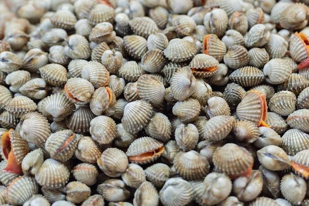Venda de pilha de berbigão cru no mercado de produto fresco.