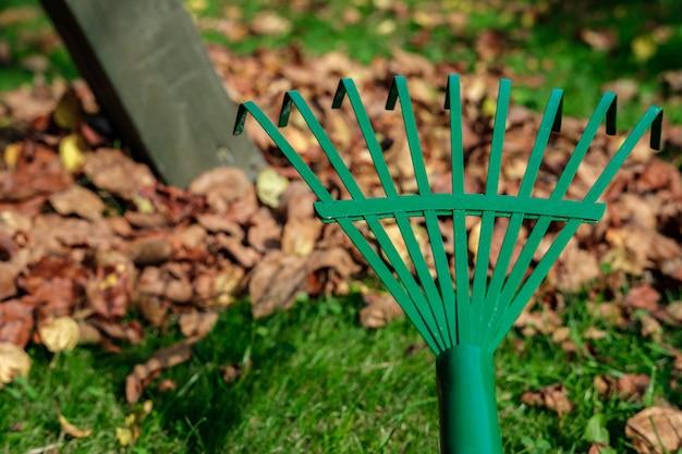 Ventilador verde de metal rake close-up no contexto de um gramado com grama verde e folhas de outono desintegradas.