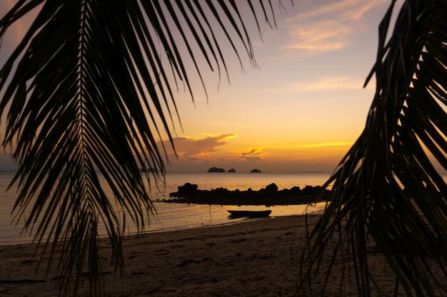 Ver através das folhas das palmeiras no oceano. há um barco de madeira na água. pôr do sol. areia da praia. romance