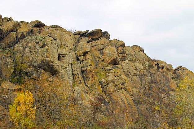 Ver nas rochas