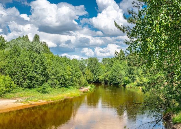 Verão de rio de floresta de paisagem. paisagem verde da natureza. paisagem de verão com floresta de rio e nuvens no céu azul. rio calmo fluindo suavemente pela paisagem florestal
