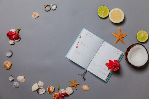 Verão, diário, frutas, conchas e flores