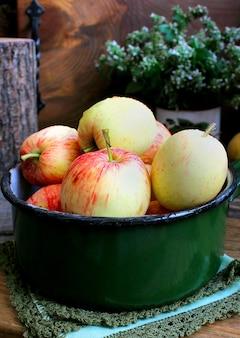 Verão jardim maçãs hortelã